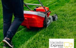 recogida-de-muebles-y-desechos-al-limpiar-el-jardin